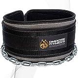 DMoose Fitness Premium Dip Gürtel mit Kette 36'Heavy Duty Stahlkette - Maximieren Sie Ihre Gewichtheben & Bodybuilding Workouts mit Durable Dipping Belt