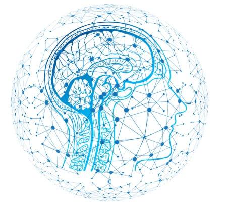 Gedächtnis Gehirn