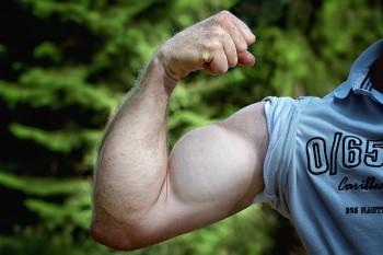 refeed glykogen bizeps muskeln