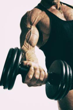Kurzhantel Fitnessgeräte für zuhause Muskelaufbau