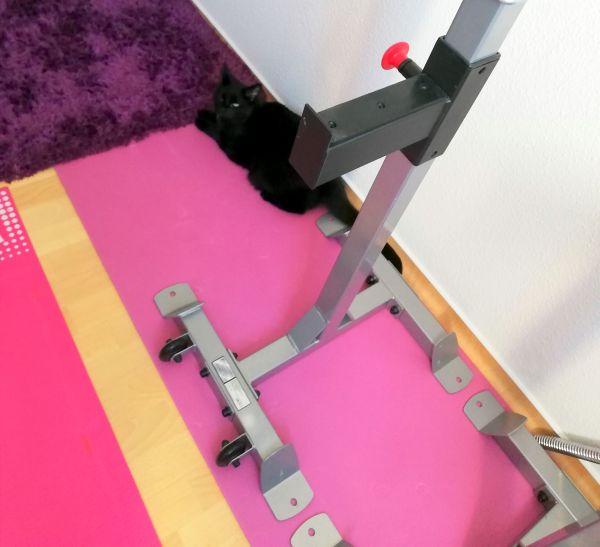 LH Ablage auf Matte Fitnessgeräte für zuhause Muskelaufbau
